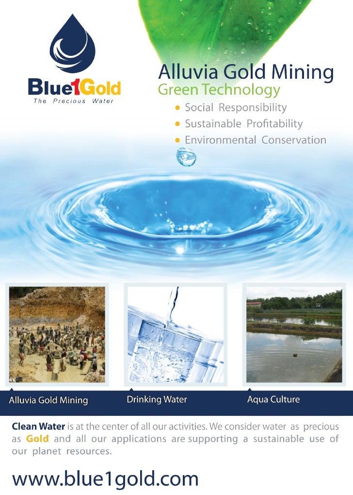 Blue1Gold brochure