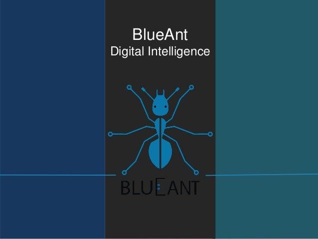 Blueant corporate presentation