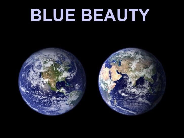 Bluebeauty(Globe)