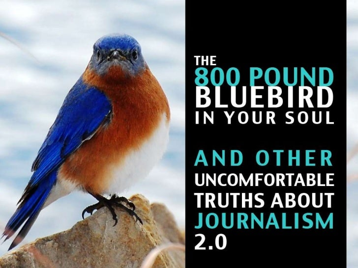 The 800 Pound Bluebird in Your Soul and Other Uncomfortable Truths about Journalism 2.0