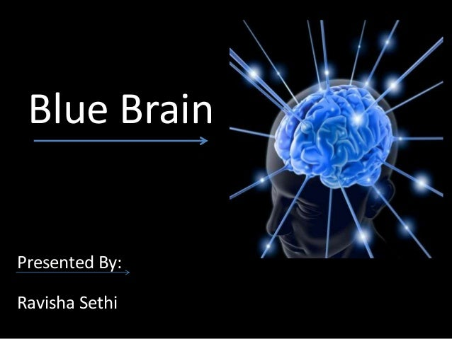 history of the blue brain technology Researchers say european commission-funded initiative to simulate human brain suffers from 'substantial failures.