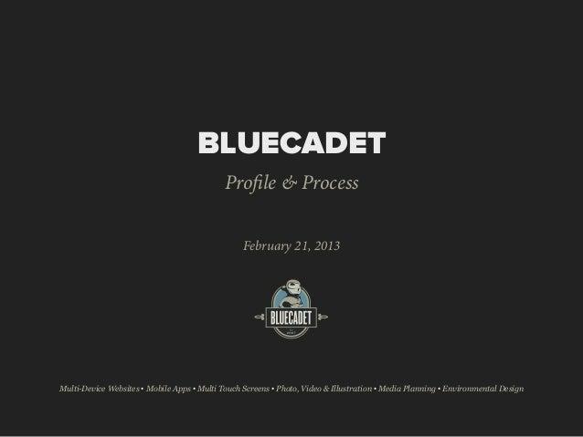 BLUECADET                                             Profile & Process                                                  F...