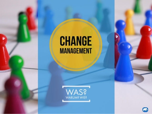 Change Management Einblicke - Blue Change Solutions