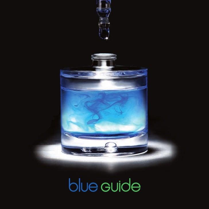 Blueguide de web