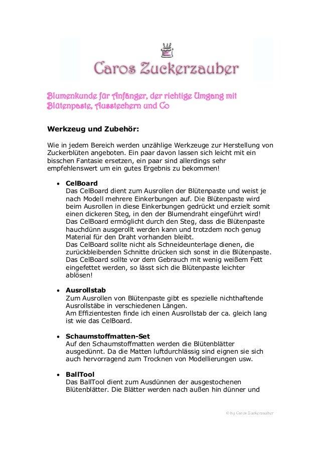© by Caros Zuckerzauber Blumenkunde für Anfänger, der richtige Umgang mit Blütenpaste, Ausstechern und Co Werkzeug und Zub...