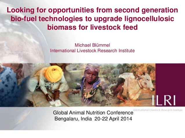 Looking for opportunities from second generation bio-fuel technologies to upgrade lignocellulosic biomass for livestock feed