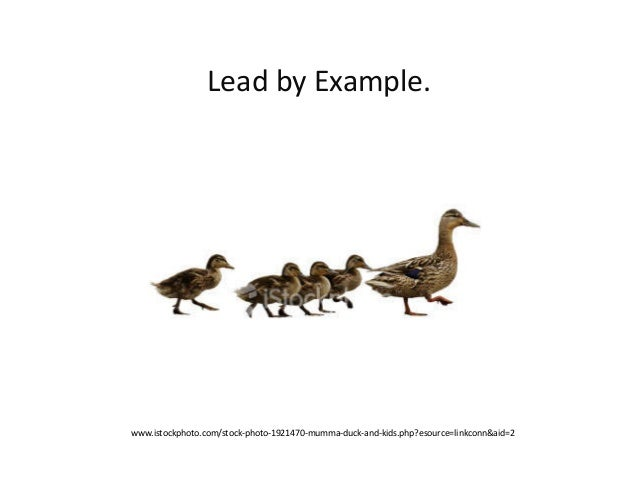 Lead	  by	  Example.	  www.istockphoto.com/stock-­‐photo-­‐1921470-­‐mumma-­‐duck-­‐and-­‐kids.php?esource=linkconn&aid=2