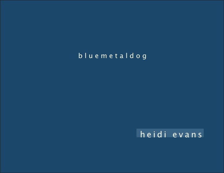 bluemetaldog brochure