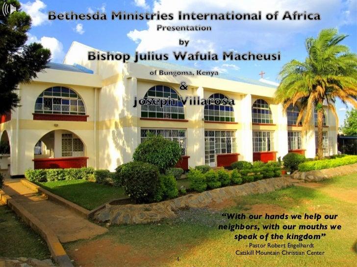 BMI-Africa - Overview Presentation
