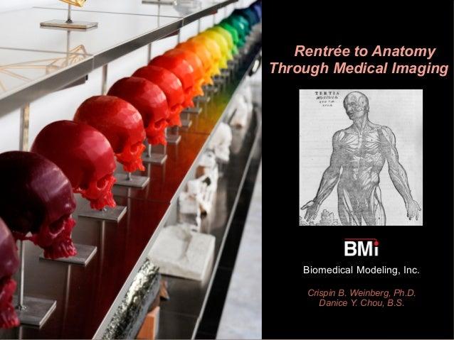 Artists' Rentrée to Anatomy Through Medical Imaging