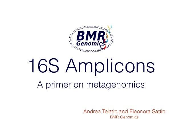 thesis on metagenomics Deep groundwater metagenomics - computational analysis of microbial deep groundwater metagenomics - computational analysis of thesis is pre-sented 11.