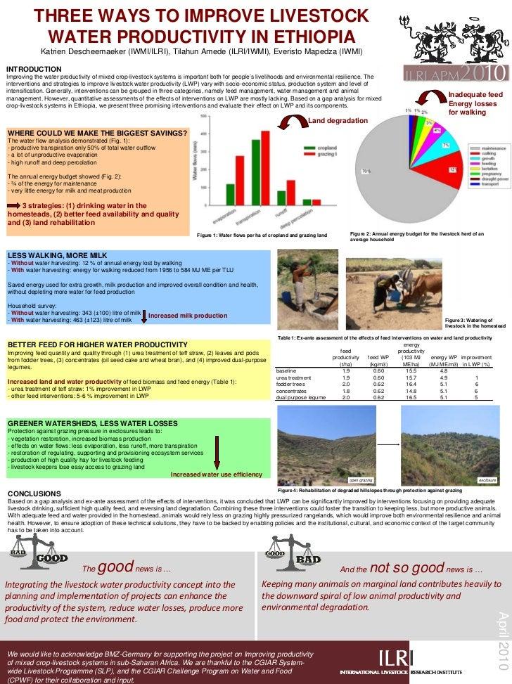 THREE WAYS TO IMPROVE LIVESTOCK            WATER PRODUCTIVITY IN ETHIOPIA             Katrien Descheemaeker (IWMI/ILRI), T...