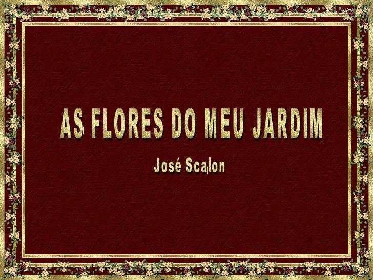 AS FLORES DO MEU JARDIM José Scalon~ Flores Do Meu Jardim Kboing