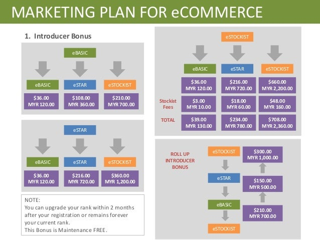 Ecommerce Website Business Plan Template Benefited Focus
