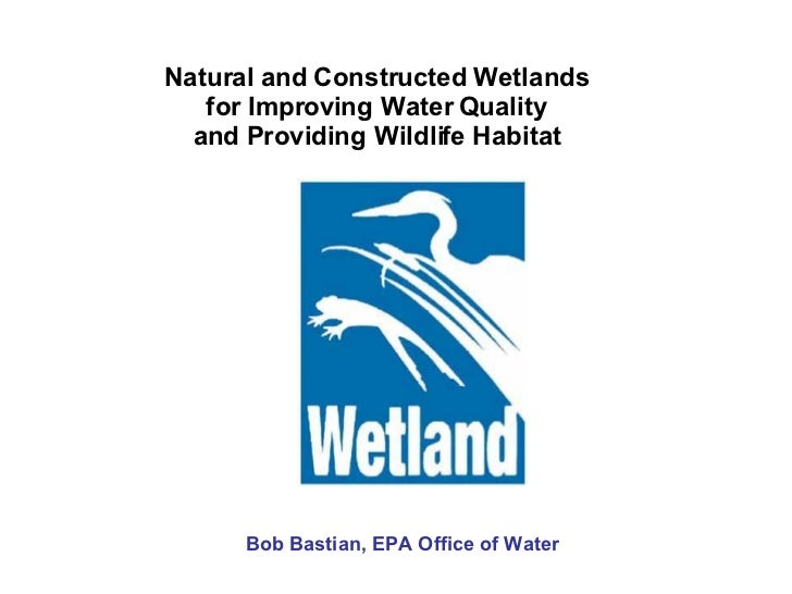 Natural and Constructed Wetlands for Improving Water Quality and Providing Wildlife Habitat Bob Bastian, EPA Office of Wat...