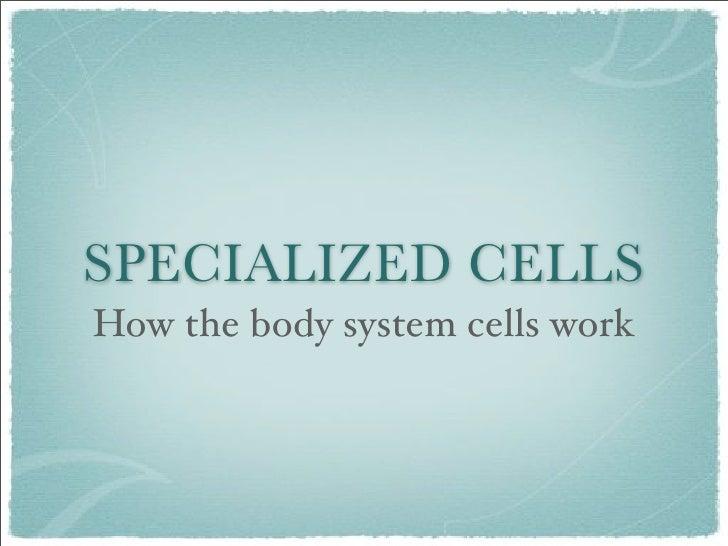 Body Cells