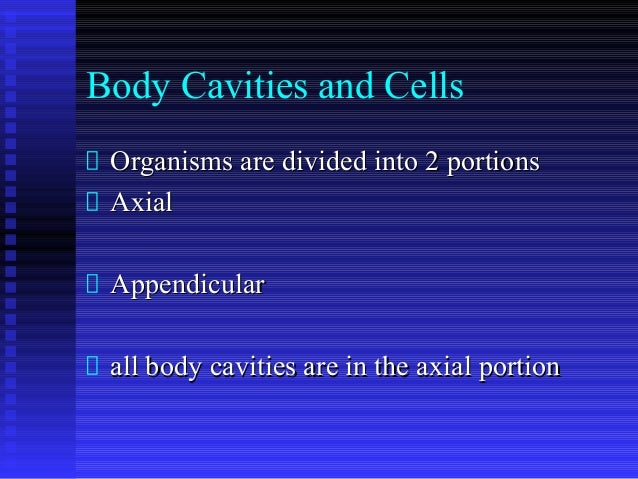Body Cavities and Cells Organisms are divided into 2 portionsOrganisms are divided into 2 portions AxialAxial Appendicular...