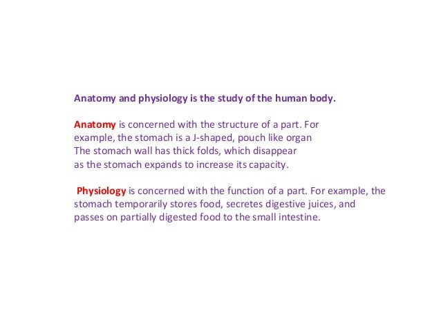 Anatomy and physiology is the study of the human body. Anatomy is concerned with the structure of a part. For example, the...