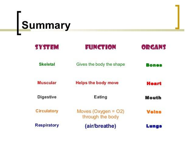 The body summary