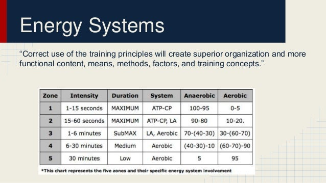 Body systems used in swimming