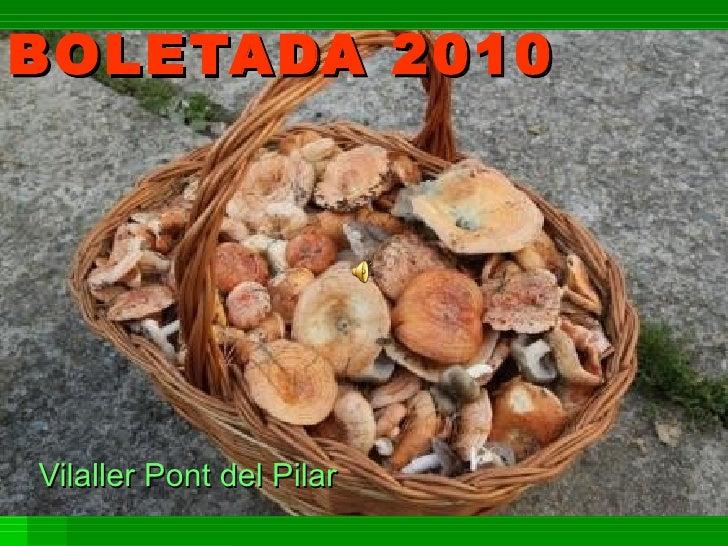 BOLETADA 2010 Vilaller Pont del Pilar