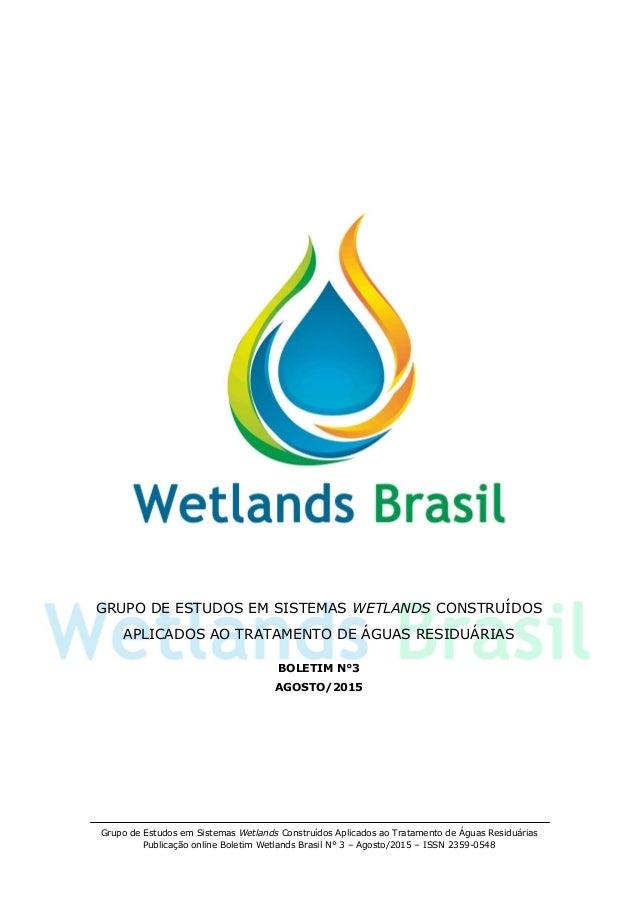 Grupo de Estudos em Sistemas Wetlands Construídos Aplicados ao Tratamento de Águas Residuárias Publicação online Boletim W...