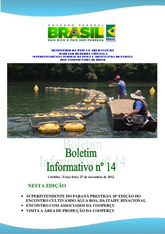 Boletim informativo  n 14