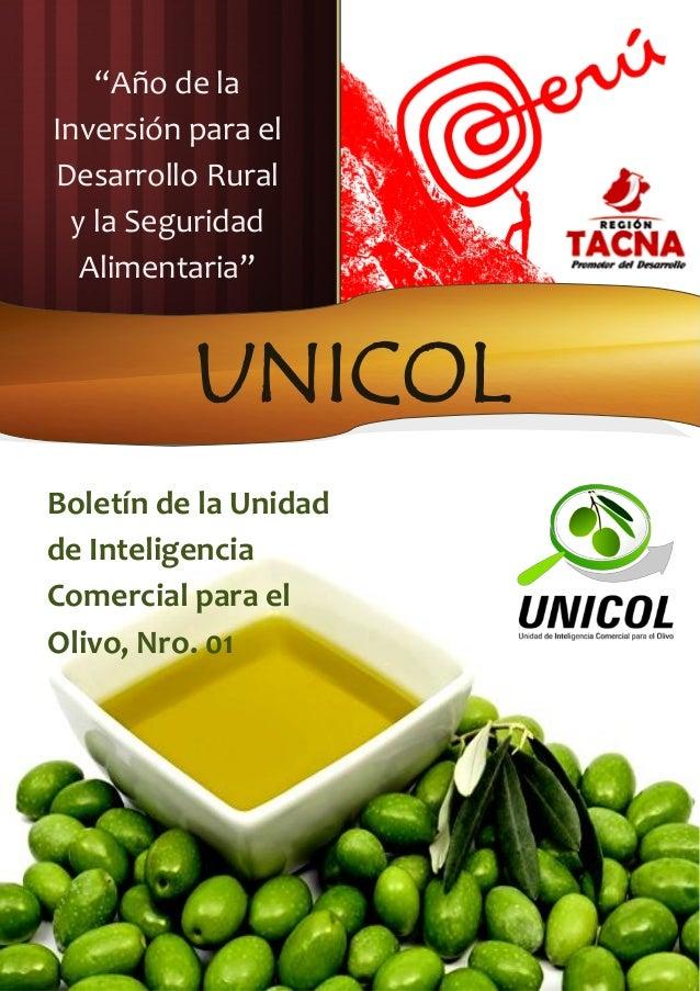 Boletin Unicol Nro. 01