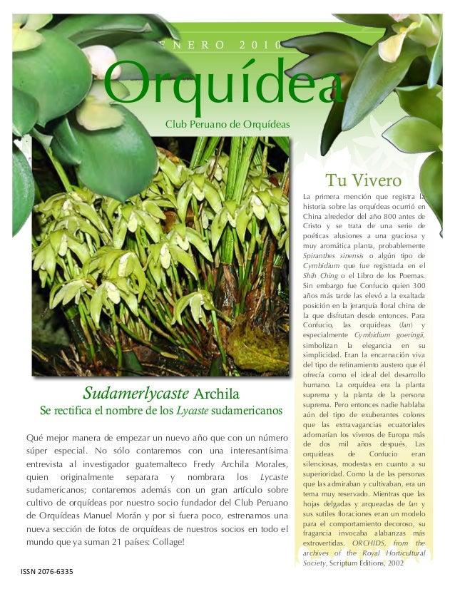 E N E R O 2 0 1 0 Tu Vivero La primera mención que registra la historia sobre las orquídeas ocurrió en China alrededor del...