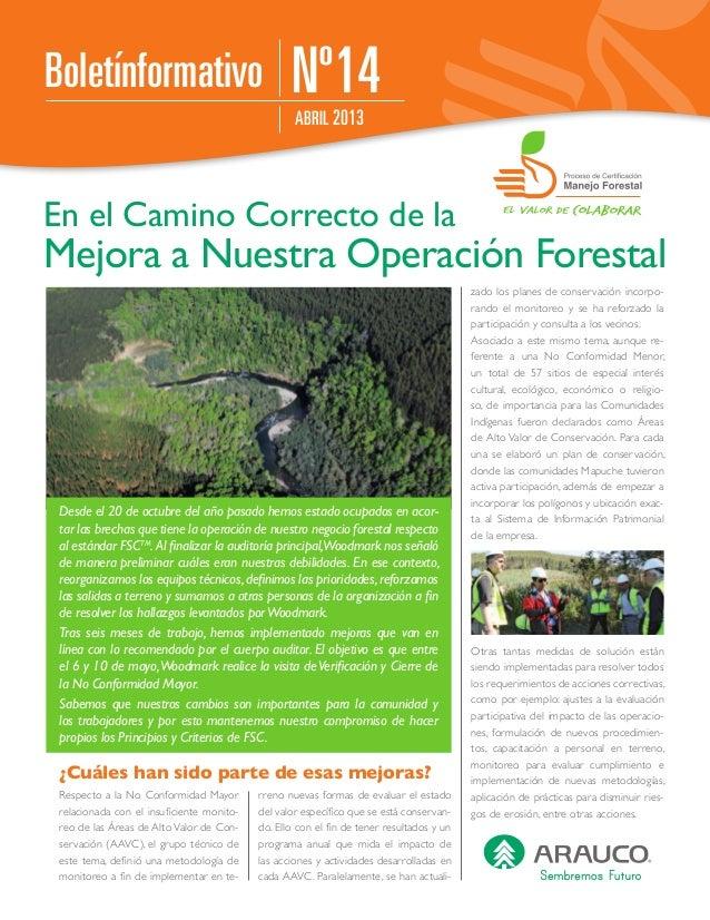 Nº14ABRIL 2013BoletínformativoEn el Camino Correcto de laMejora a Nuestra Operación ForestalDesde el 20 de octubre del año...