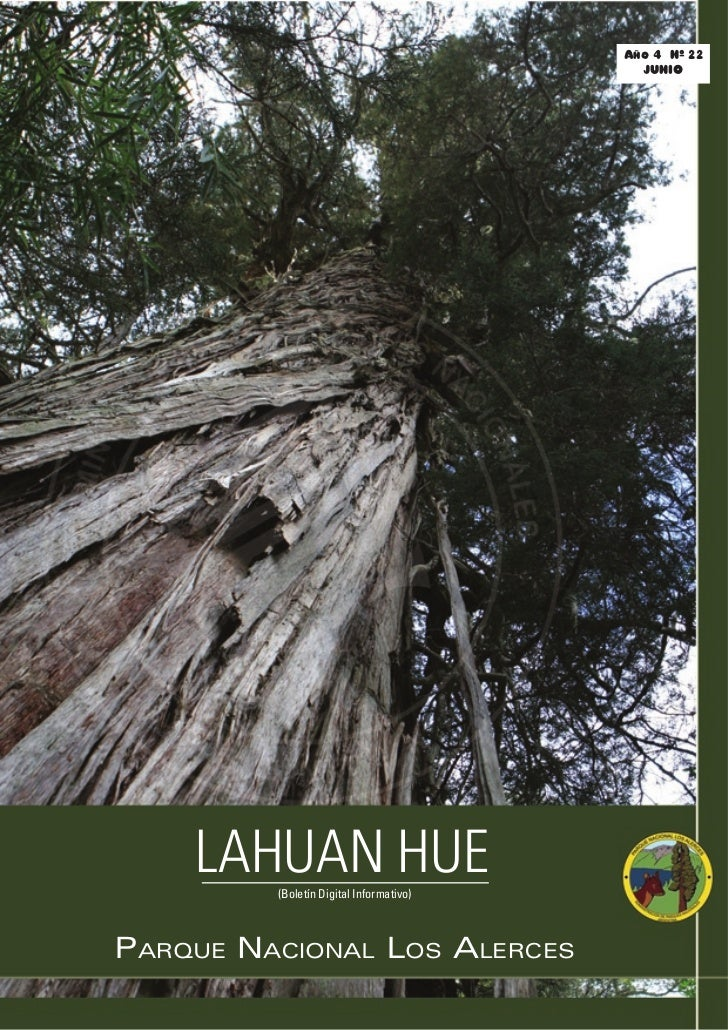 Año 4 Nº 22                                            JUNIO         LAHUAN HUE          (Boletín Digital Informativo)    ...