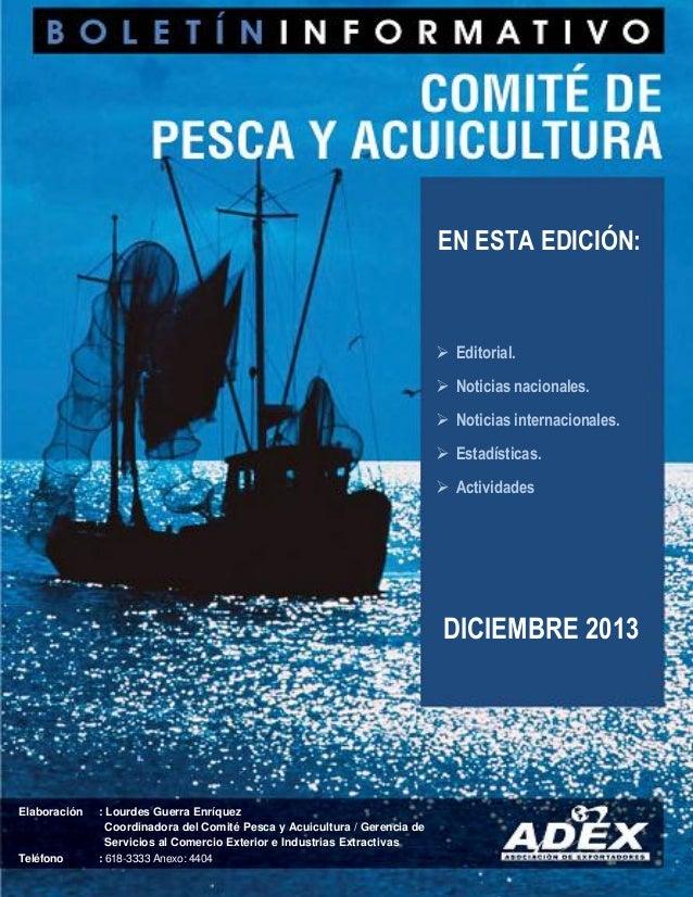 ADEX - Boletin Pesca 2013