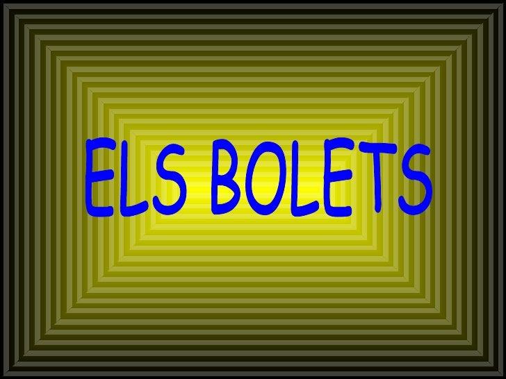 Carles - Bolets