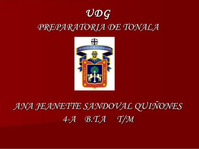 UDG    PREPARATORIA DE TONALAANA JEANETTE SANDOVAL QUIÑONES         4-A B.T.A T/M