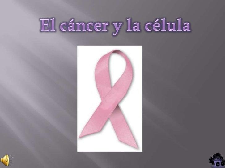 CONTENIDOS           El cáncer   Las celulas cancerígenas   Primeros investigadores       Tratamientos      Cáncer de...