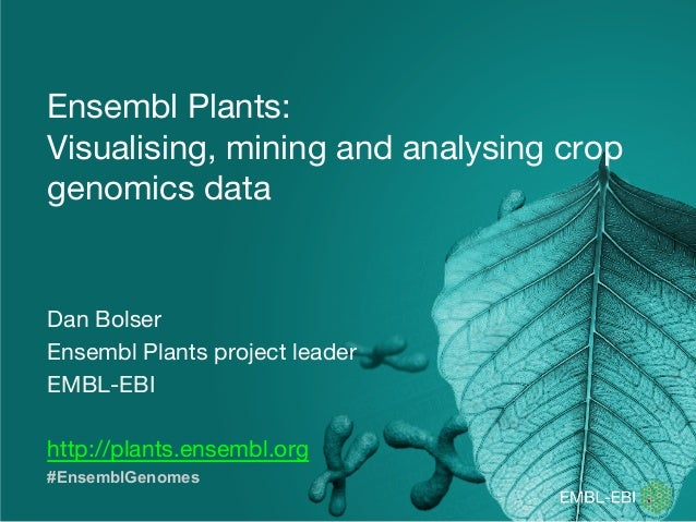Ensembl Plants: Visualising, mining and analysing crop genomics data Dan Bolser Ensembl Plants project leader EMBL-EBI htt...
