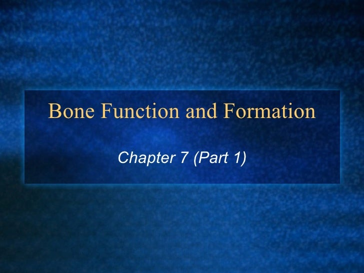 Bone Function and Formation Chapter 7 (Part 1)