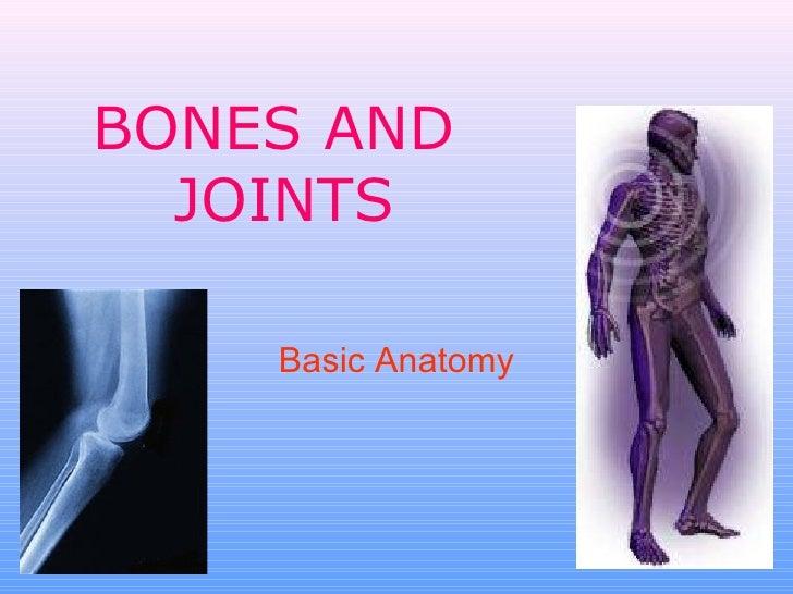 BONES AND  JOINTS Basic Anatomy