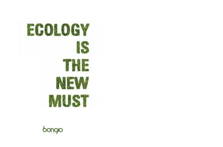 Bongio catalogo2012