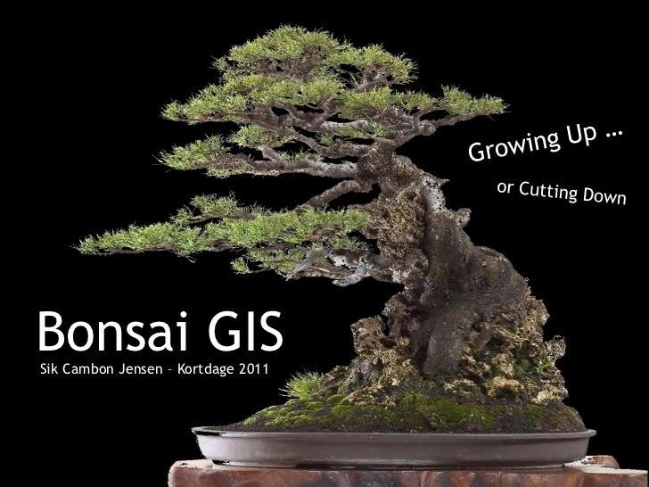 Bonsai GISSik Cambon Jensen – Kortdage 2011