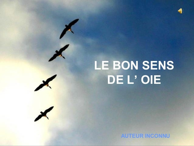 LE BON SENS  DE L' OIE   AUTEUR INCONNU