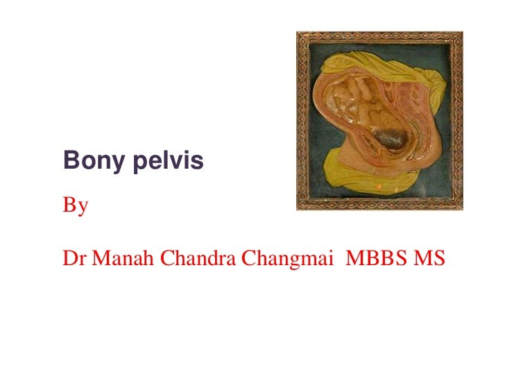 Bony pelvis<br />By<br />Dr Manah Chandra Changmai  MBBS MS<br />