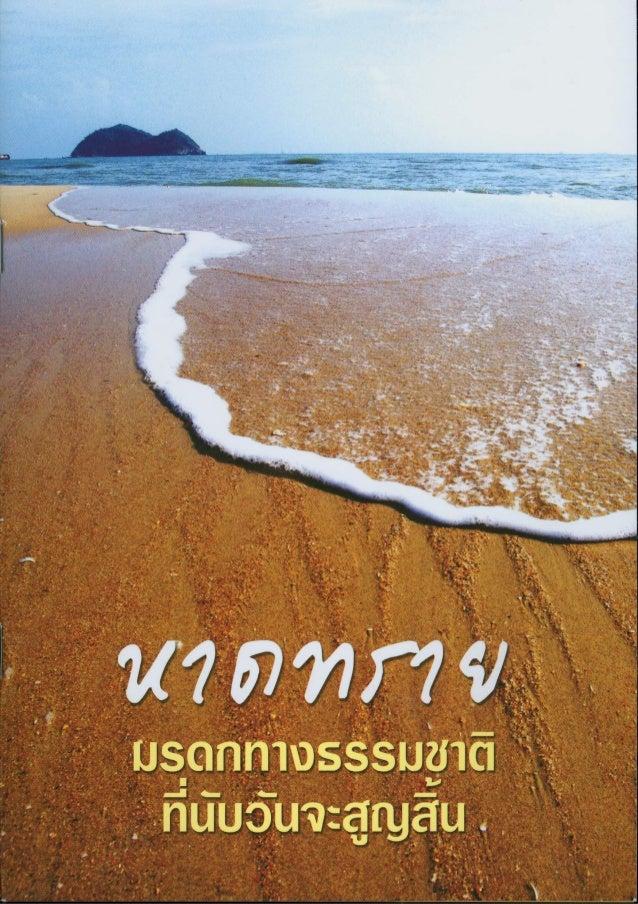 หาดทราย มรดกทางธรรมชาติ ที่นับวันจะสูญสิ้น