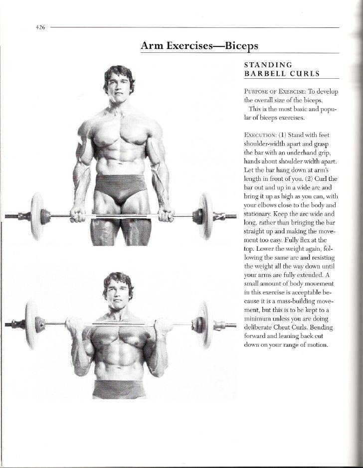 Book 3 8 1 Bicep Exercises
