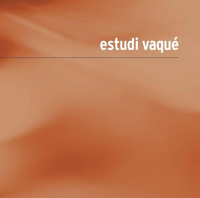 Book IDDIC-Estudi Vaqué (setembre 2011)