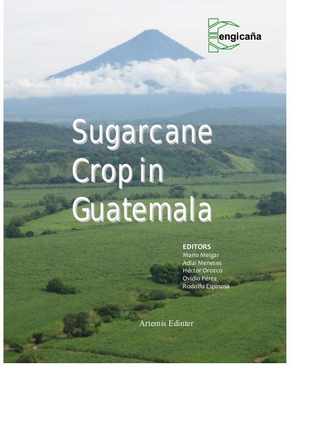 Book sugarcane crop in guatemala