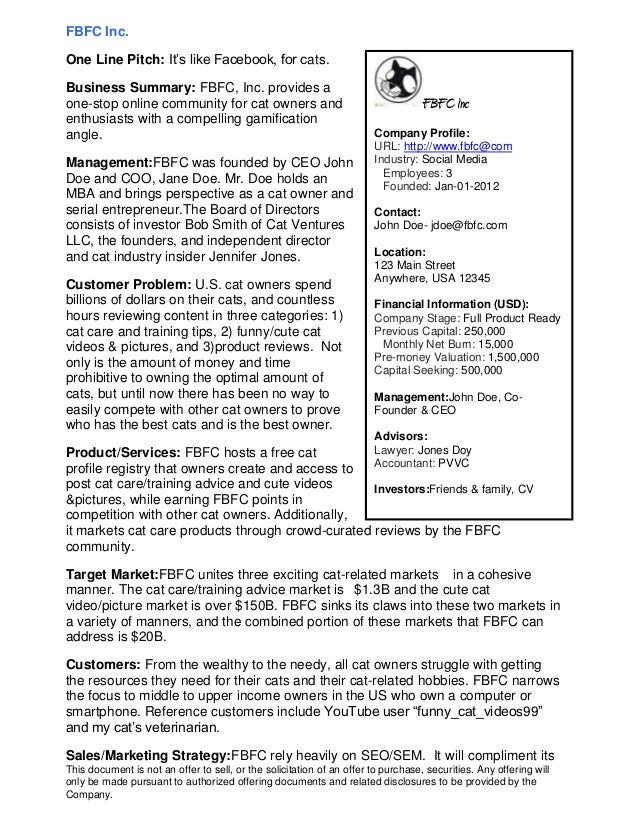 Executive Summary Business Plan Template