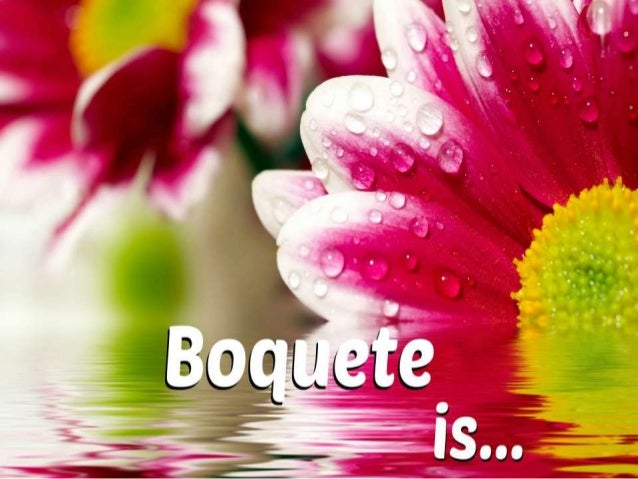 Boquete5