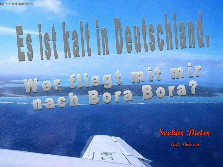 Es ist kalt in Deutschland. Wer fliegt mit mir nach Bora Bora? Seebär Dieter läd  Dich ein