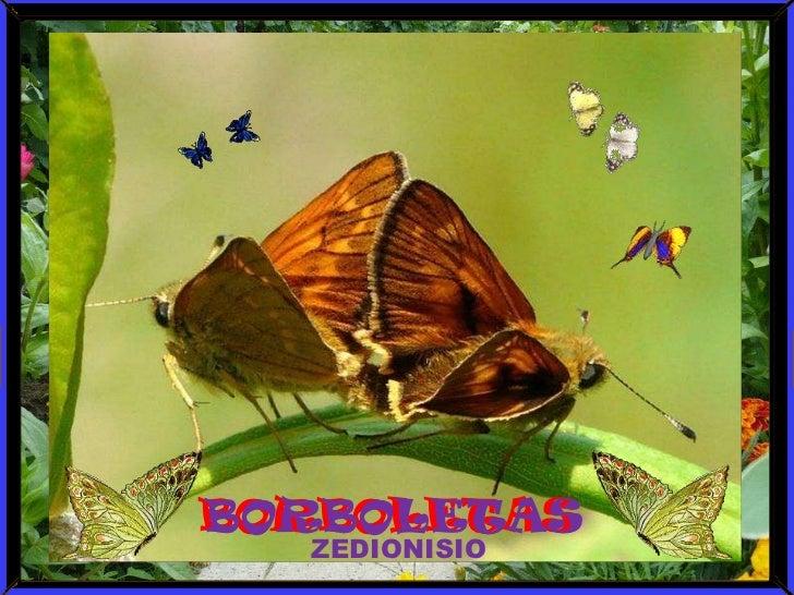 BORBOLETAS<br />BORBOLETAS<br />ZEDIONISIO<br />